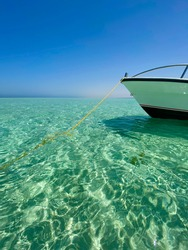 Crystal waters of the red sea