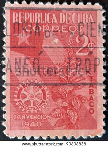 CUBA - CIRCA 1940: A stamp printed in Cuba dedicated to plant to snuff, circa 1940