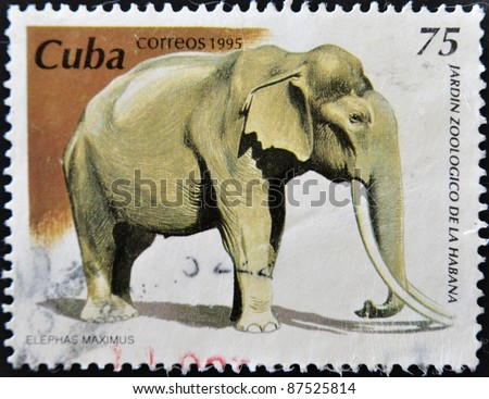 CUBA - CIRCA 1995: A stamp printed in Cuba dedicated to the Havana Zoo, shows a elephant maximus, circa 1995