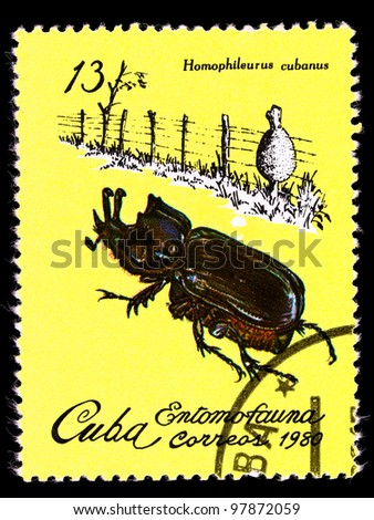 """CUBA - CIRCA 1980: A Stamp printed in Cuba shows an image of an Insect with the inscription """"Homophileurus  cubanus"""", from the series """"Insects"""" , circa 1980 - stock photo"""