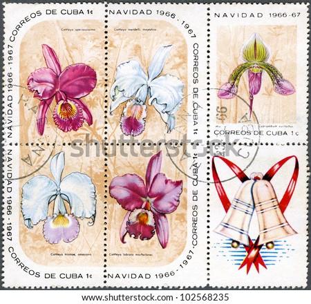 CUBA - CIRCA 1966: A Stamp printed in Cuba shows Cypripedium eurylochus, Cattleya speciosissima, Cattleya mendelii majestica, Cattleya trianae amesiana, Cattleya labiata macfarlanei, circa 1966