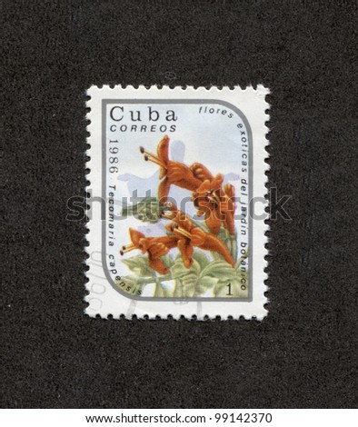 CUBA - CIRCA 1986: A stamp printed in Cuba shows image of a flowers, circa 1986