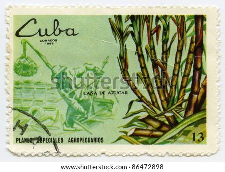 CUBA - CIRCA 1969: A stamp printed in Cuba, shows sugarcane, circa 1969