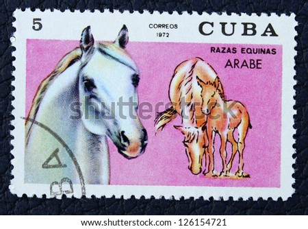 CUBA - CIRCA 1972: A stamp printed in the Cuba, shows horse, circa 1972