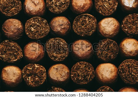 Cuban Cigars, Close up. #1288404205
