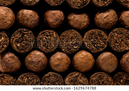 Cuban Cigars: Close up of luxury hand made cigars stacked in a storage box. Tobacco display background or wall art. ストックフォト ©