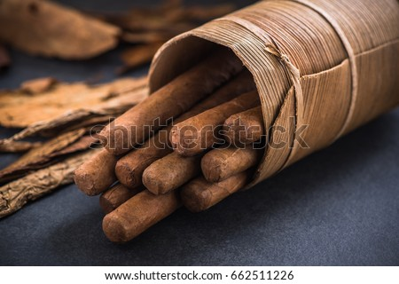 Cuban cigars in traditional cigars holder.