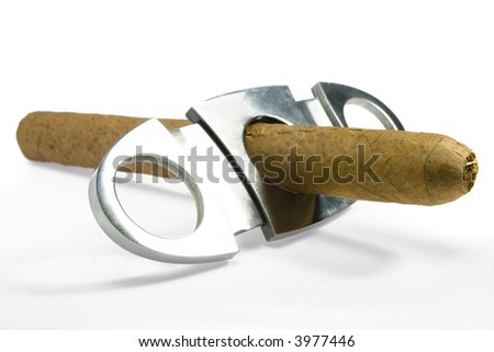 cuban hand-rolled cigars on white