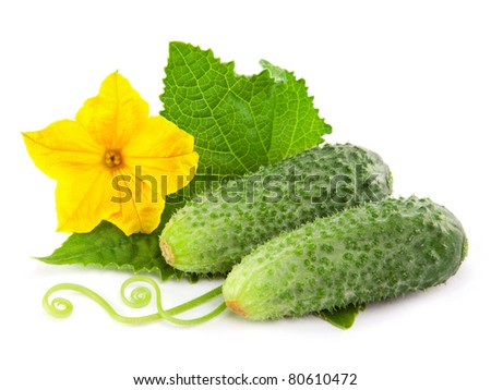 Cucumber isolated over white background