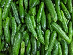 Cucumbers green healthy organic vegetables. Raw fresh food.