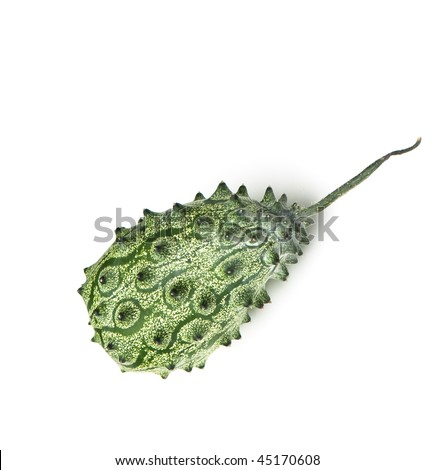 Cucumis metuliferus - Exotic fruit. kiwano. horned melon, African horned cucumber Anguriya. - stock photo