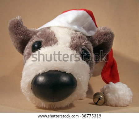 Cuddly toy-dog is ready for X-mas 04