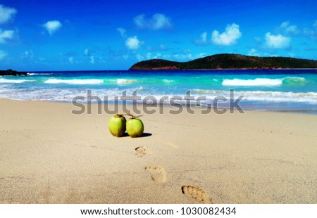 CULEBRA, PUERTO RICO, 2018. Caribbean Island on secret beach.  Footprints lead to leaning coconuts basking in the warm sun and golden sand.  All shades of blue, sea, sky and island silhouette.