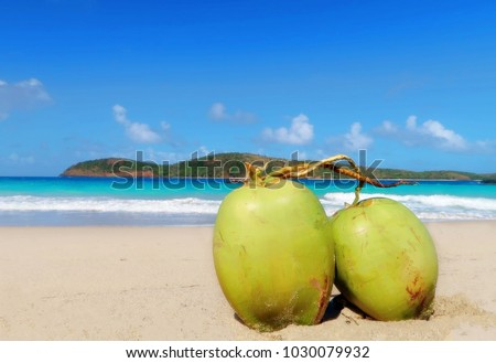 CULEBRA, PUERTO RICO, FEB.3/2018. Caribbean Island on secret beach. Two coconuts sitting together like best n the warm sun and golden sands.  Bright blue sea and sky, island silhouette.  Soul mates.