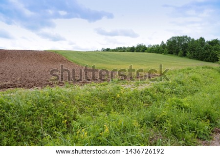 cultivated field, farmland plowed and sown #1436726192