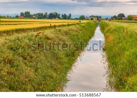 cultivated fields in Italian countryside #513688567