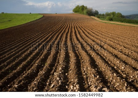 cultivated land prepared for sowing, Teočin, Serbia #1582449982