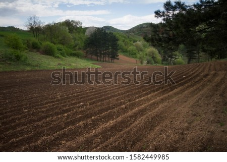 cultivated land prepared for sowing, Teočin, Serbia #1582449985