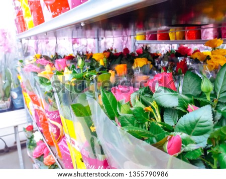 Cultivated ornamental flowers growing in a commercial plactic foil covered horticulture greenhouse #1355790986