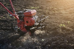 Cultivator in the process. Special device for loosening the soil. Preparing the soil before planting