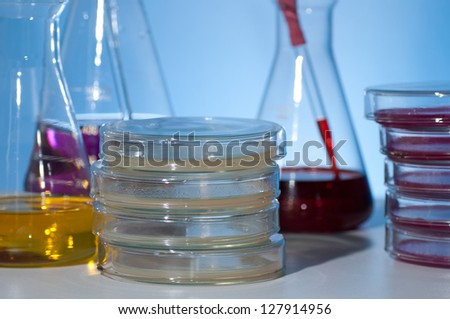 culture dish and other glass laboratory apparatus in desk