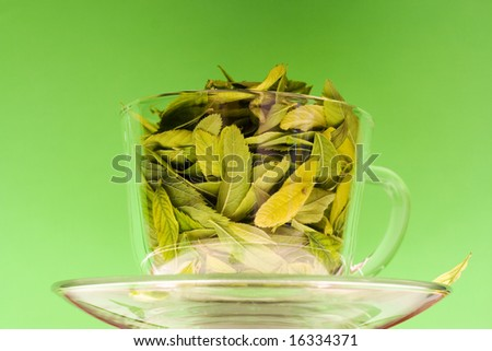 Cup full of leaves