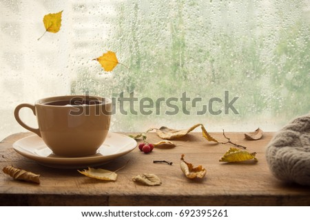 cup of autumn tea  coffee ...