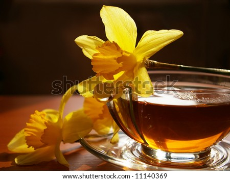 Cup of black tea and flowers narcissus