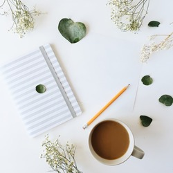 Cup of coffee with milk, sketchbook, pencil, green leaves and dried flowers. Overhead view. Isolated on white. Flat lay, top view