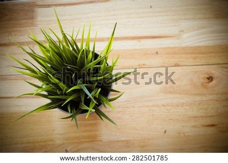 cup of  grass on wooden table