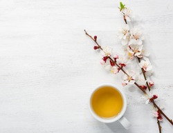 Cup of green tea and  branches of blossoming apricot  on  old wooden shabby background