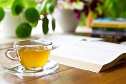 Cup of green tea, open book and plants in the background. Tea and books