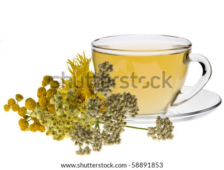 cup of herbal tea and fresh herb isolated on white background - stock photo