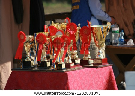 Cup of horses endurance on the table with red rosettes #1282091095