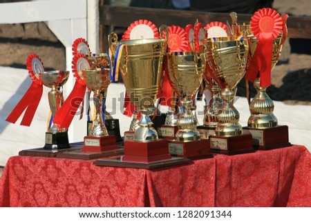 Cup of horses endurance on the table with red rosettes #1282091344