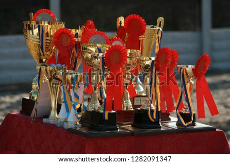 Cup of horses endurance on the table with red rosettes #1282091347