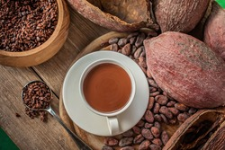 Cup of hot chocolate with cocoa powder, cocoa beans