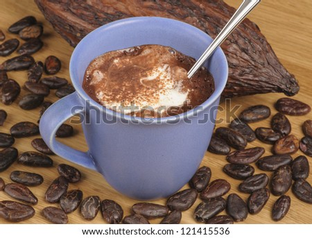 Cup of hot chocolate with whipped cream surrounded by cocoa beans and fruit