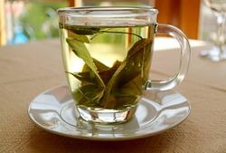 Cup of Hot Coca Leaf Tea for preventing altitude sickness in Peru