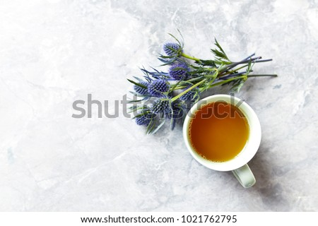 Cup of Tea and Amethyst Sea Holly Flowers on gray background #1021762795