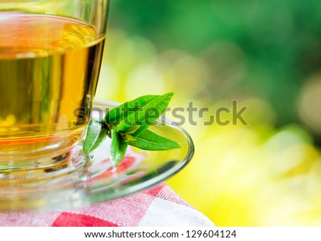 Cup of tea on nature background.