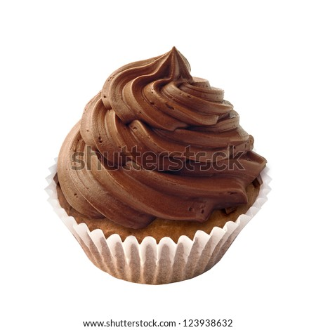 Cupcake with chocolate chips and icing