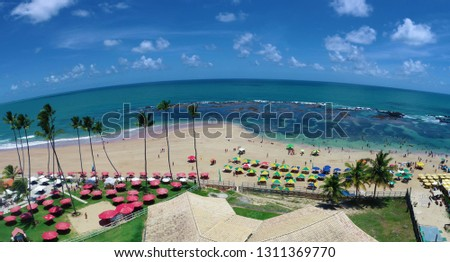 Cupe's Beach, Porto de Galinhas, Brazil: unique experience of swimming with fishs in natural pools. Perfect travel. Vacation travel. Tropical vacation. Tropical travel. Great beach scene.  #1311369770