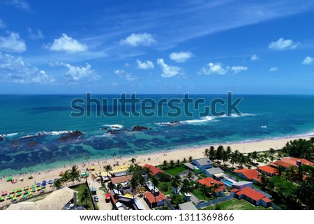 Cupe's Beach, Porto de Galinhas, Brazil: unique experience of swimming with fishs in natural pools. Perfect travel. Vacation travel. Tropical vacation. Tropical travel. Great beach scene.  #1311369866