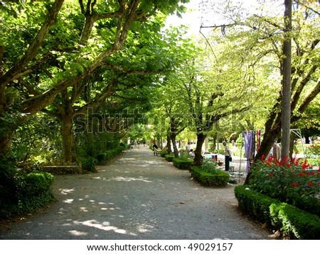 Curia park