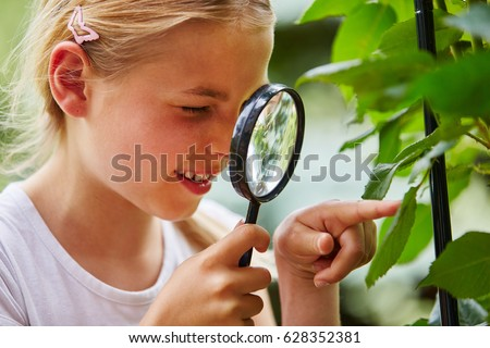 Curious child explores nature and looks at leaf with loupe Stock photo ©
