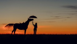 Curious horse and girl with open umbrella on romantic sunset. Idyllic friendship scene with horse silhouette, horsemanship concept.