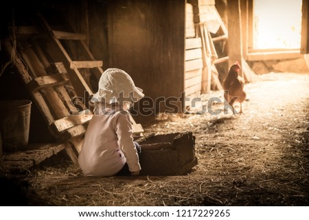 Curiuos child farmer playing in barn with chiken in rustic poultry house in countryside farmyard farming lifestyle
