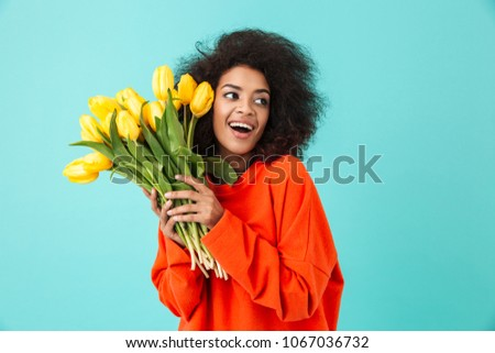 Curly american woman in red clothing looking aside and holding bunch of beautiful yellow tulips isolated over blue background