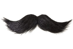 Curly black mustache isolated on white